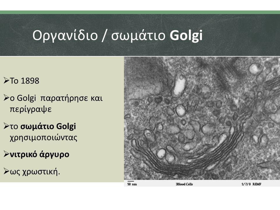 Οργανίδιο / σωμάτιο Golgi