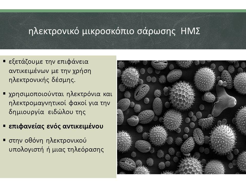 ηλεκτρονικό μικροσκόπιο σάρωσης ΗΜΣ