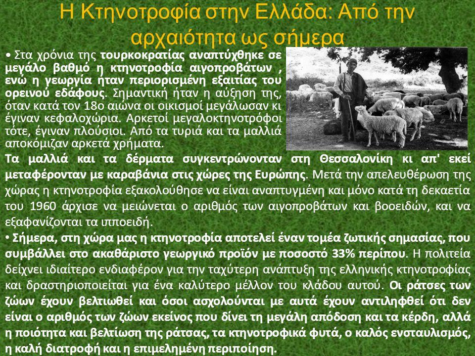 Η Κτηνοτροφία στην Ελλάδα: Από την αρχαιότητα ως σήμερα
