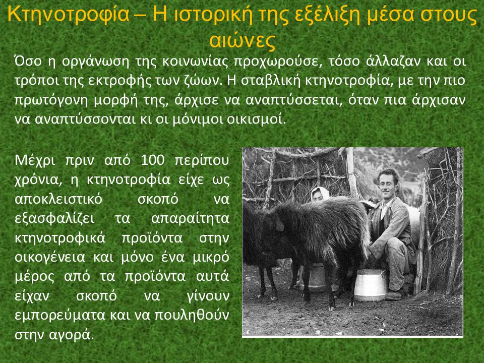 Κτηνοτροφία – Η ιστορική της εξέλιξη μέσα στους αιώνες
