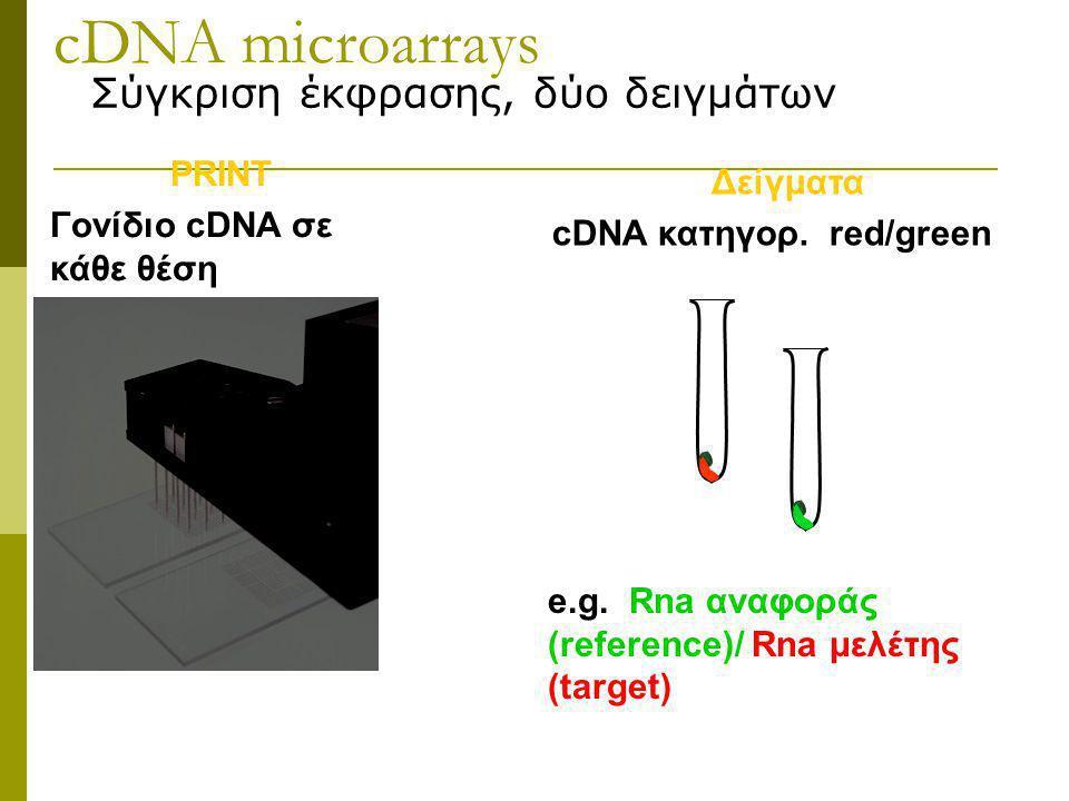 cDNA microarrays Σύγκριση έκφρασης, δύο δειγμάτων PRINT Δείγματα
