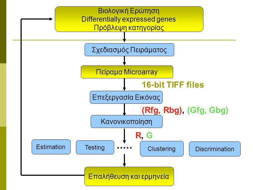 16-bit TIFF files (Rfg, Rbg), (Gfg, Gbg) R, G Βιολογική Ερώτηση
