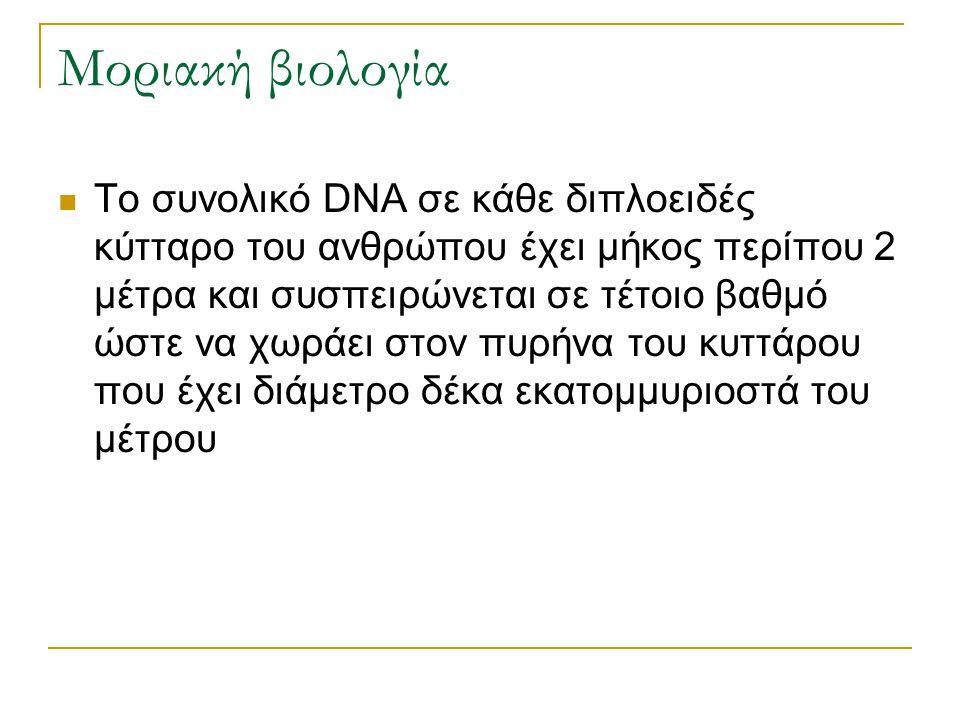 Μοριακή βιολογία