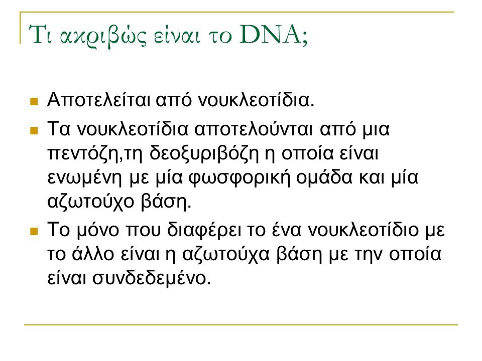 Τι ακριβώς είναι το DNA;