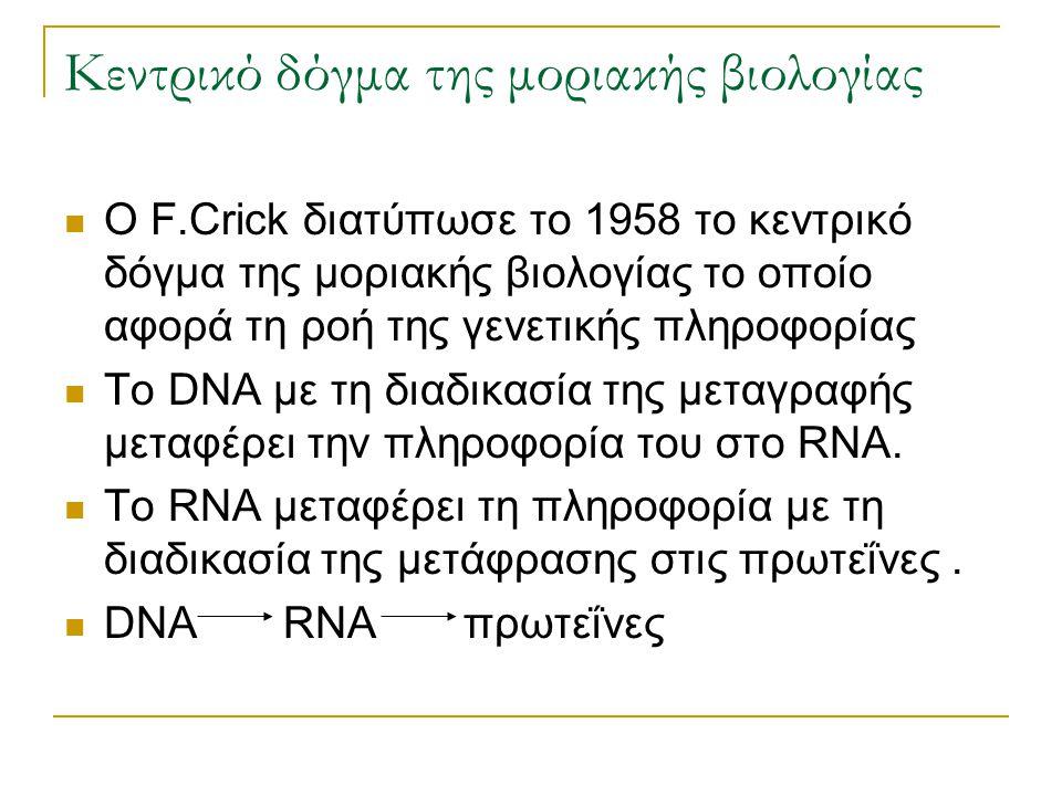 Κεντρικό δόγμα της μοριακής βιολογίας