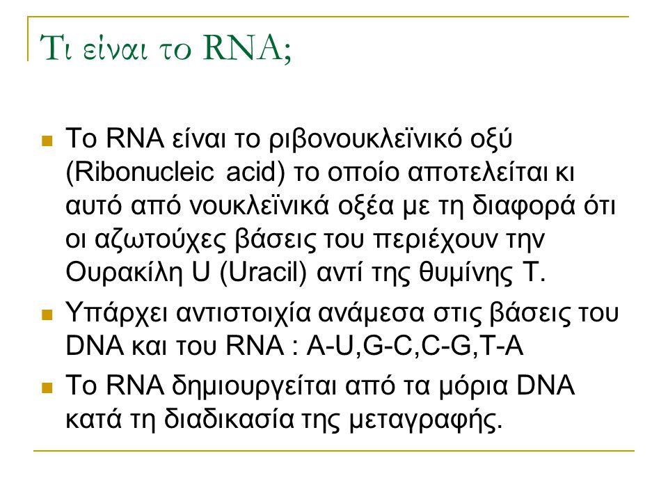 Τι είναι το RNA;