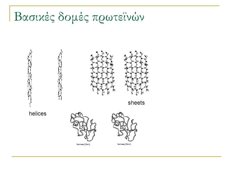 Βασικές δομές πρωτεϊνών