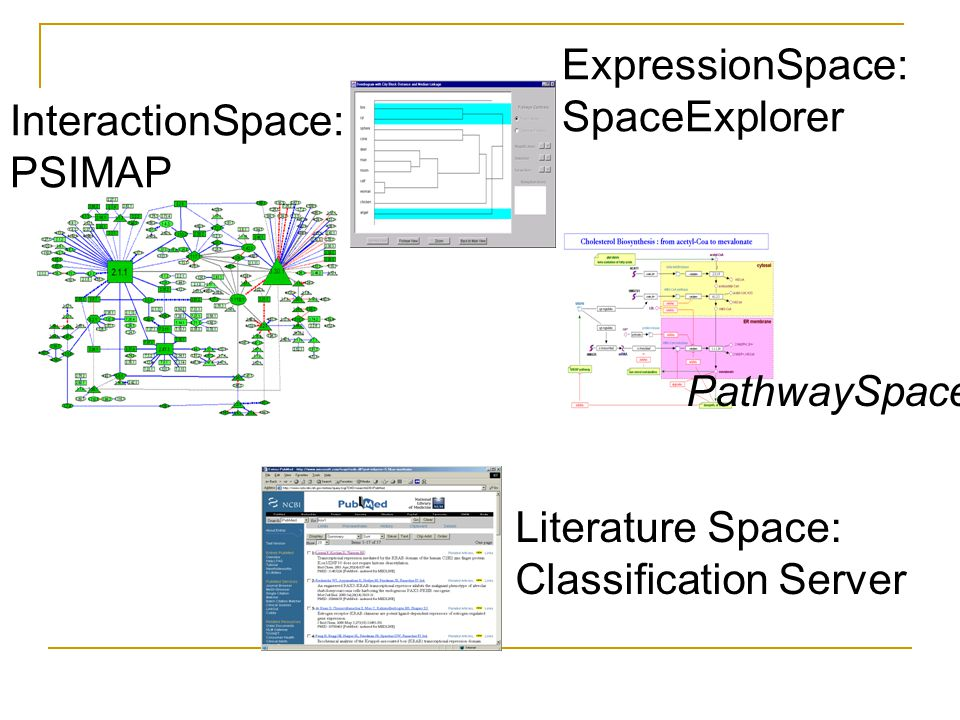 ExpressionSpace: SpaceExplorer. InteractionSpace: PSIMAP.