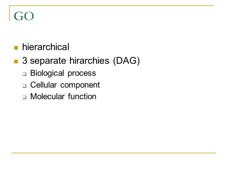 GO hierarchical 3 separate hirarchies (DAG) Biological process