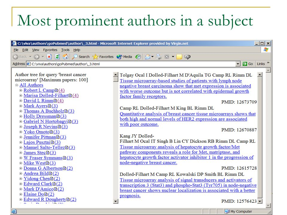 Most prominent authors in a subject
