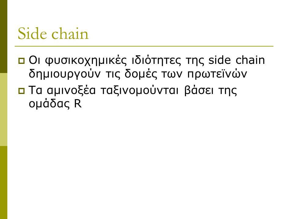 Side chain Οι φυσικοχημικές ιδιότητες της side chain δημιουργούν τις δομές των πρωτεϊνών.