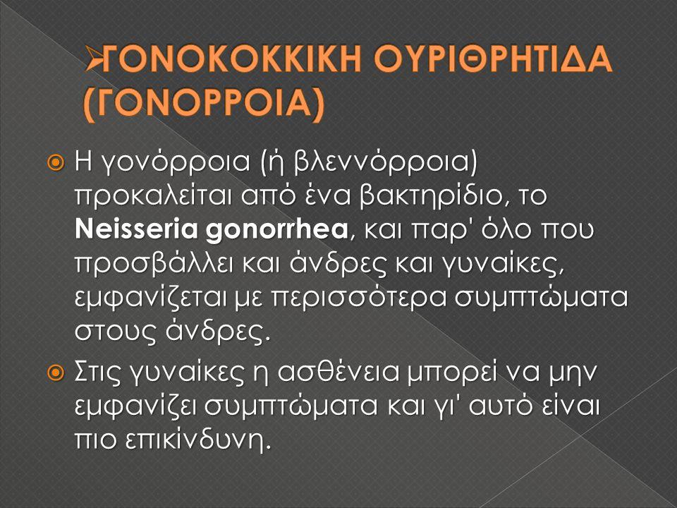 ΓΟΝΟΚΟΚΚΙΚΗ ΟΥΡΙΘΡΗΤΙΔΑ (ΓΟΝΟΡΡΟΙΑ)