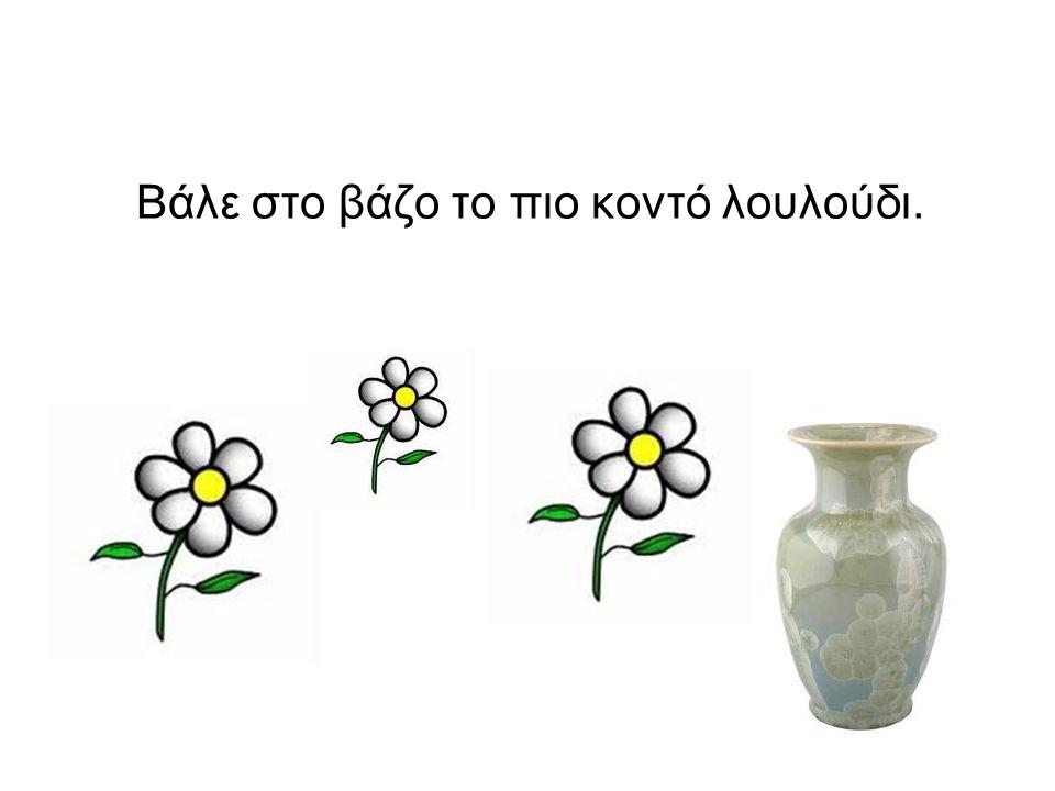 Βάλε στο βάζο το πιο κοντό λουλούδι.