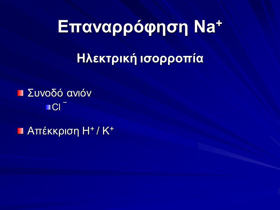 Επαναρρόφηση Na+ Ηλεκτρική ισορροπία Συνοδό ανιόν Απέκκριση H+ / K+