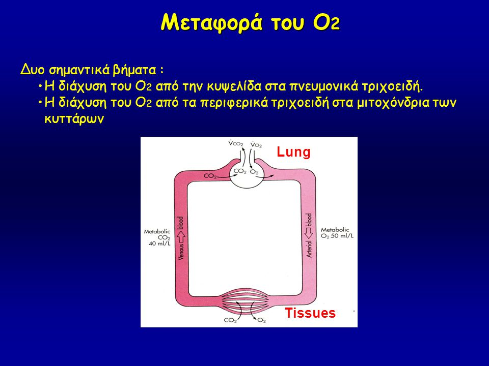 Μεταφορά του Ο2 Δυο σημαντικά βήματα :