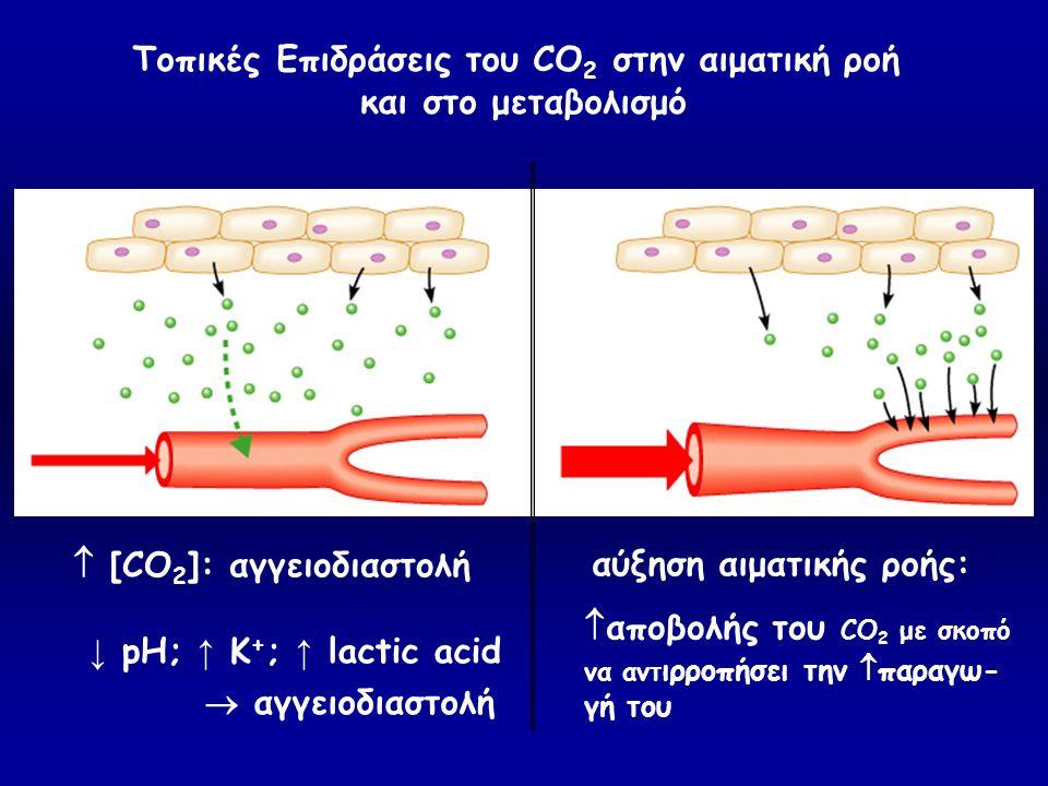 Τοπικές Επιδράσεις του CO2 στην αιματική ροή