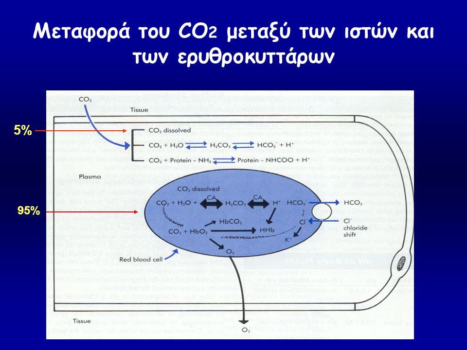 Μεταφορά του CO2 μεταξύ των ιστών και των ερυθροκυττάρων