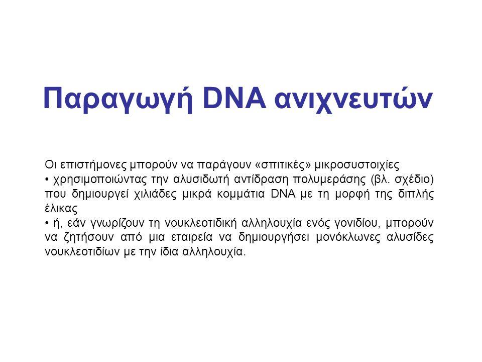 Παραγωγή DNA ανιχνευτών