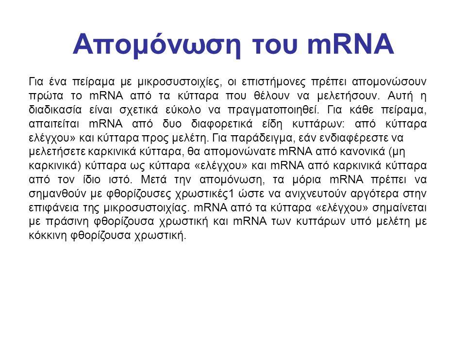 Απομόνωση του mRNA