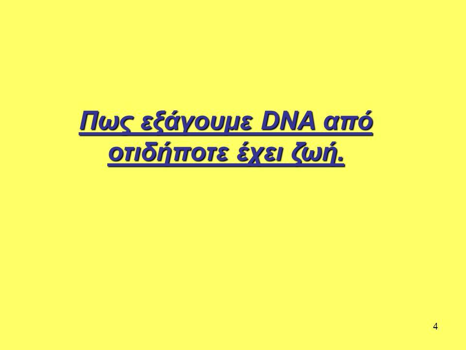 Πως εξάγουμε DNA από οτιδήποτε έχει ζωή.