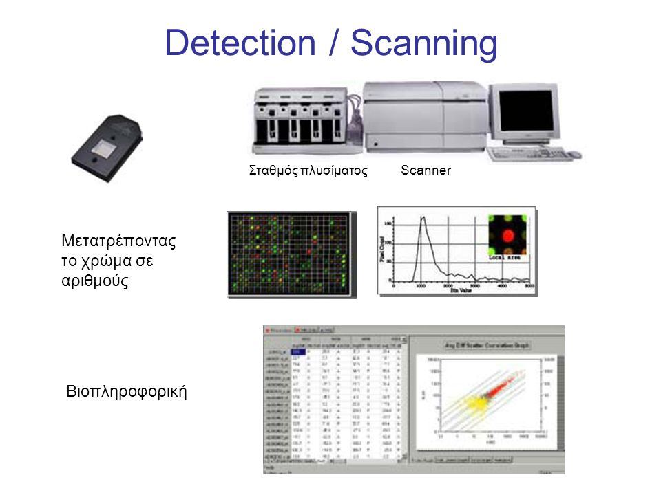 Detection / Scanning Μετατρέποντας το χρώμα σε αριθμούς Βιοπληροφορική