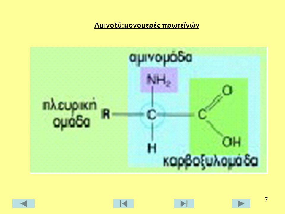 Αμινοξύ:μονομερές πρωτεϊνών