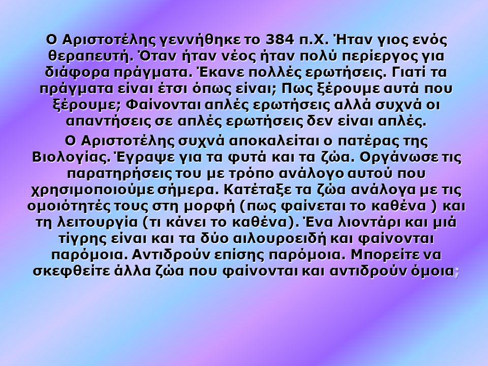 Ο Αριστοτέλης γεννήθηκε το 384 π. Χ. Ήταν γιος ενός θεραπευτή