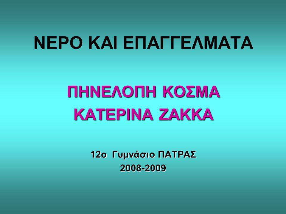 ΠΗΝΕΛΟΠΗ ΚΟΣΜΑ ΚΑΤΕΡΙΝΑ ΖΑΚΚΑ 12ο Γυμνάσιο ΠΑΤΡΑΣ 2008-2009