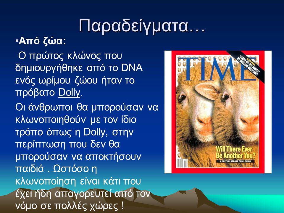 Παραδείγματα… Από ζώα: