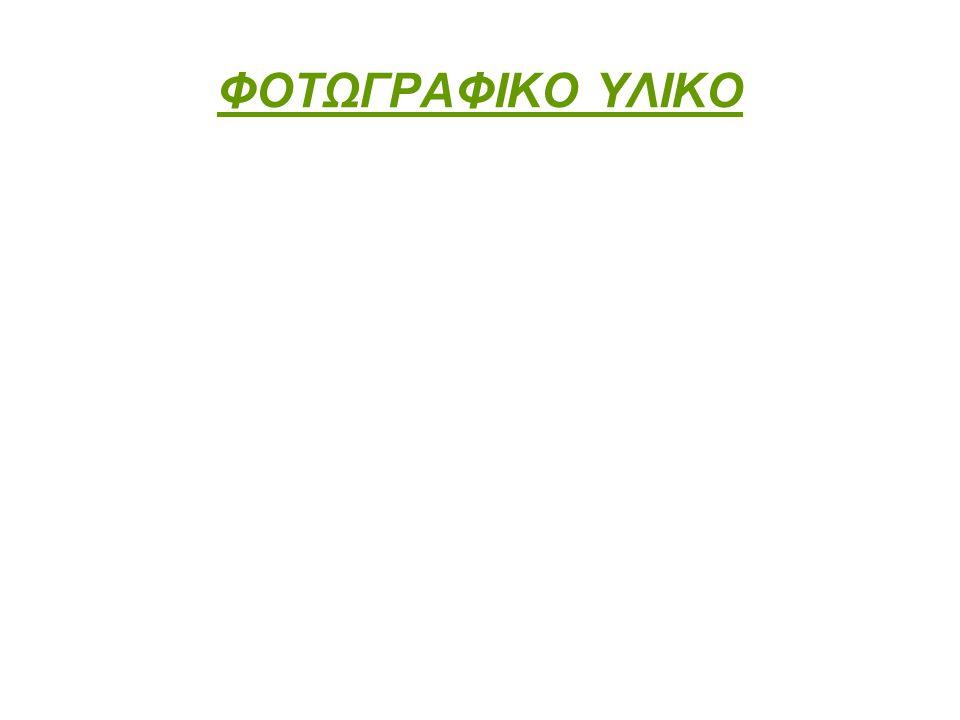ΦΟΤΩΓΡΑΦΙΚΟ ΥΛΙΚΟ