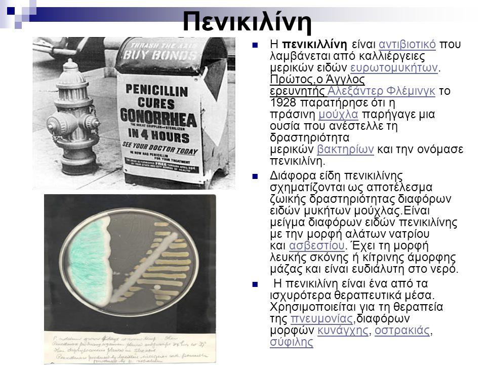 Πενικιλίνη