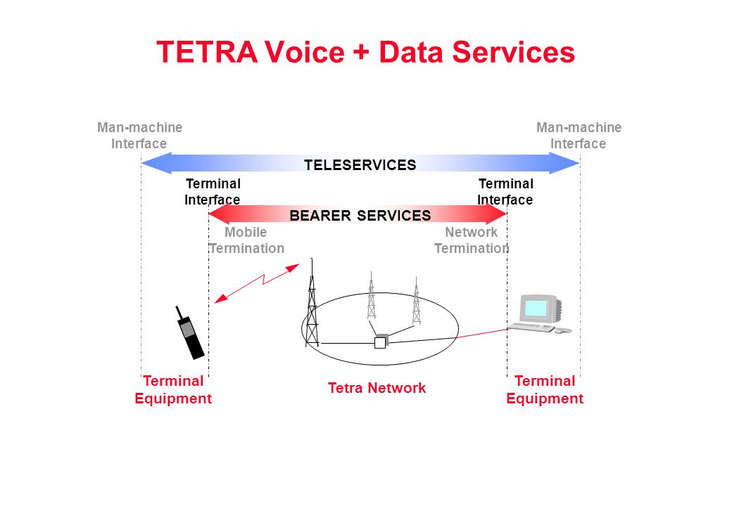 TETRA Voice + Data Services