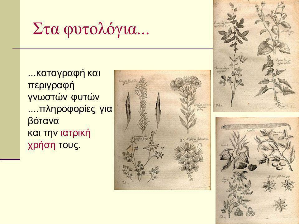 Στα φυτολόγια... ...καταγραφή και περιγραφή γνωστών φυτών ....πληροφορίες για βότανα.