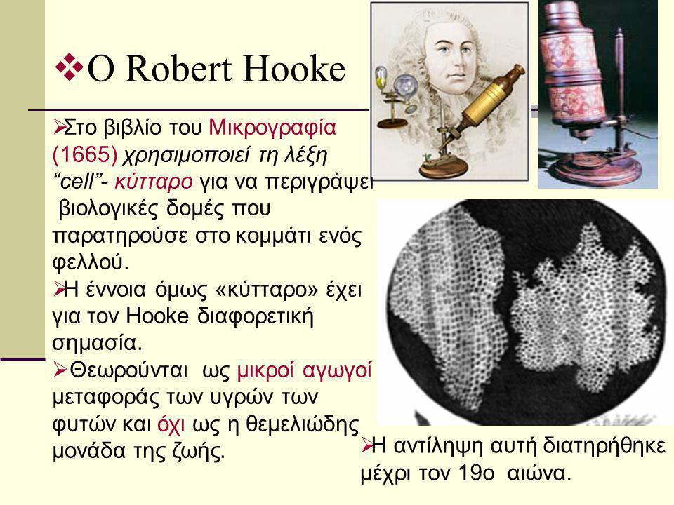 Ο Robert Hooke Στο βιβλίο του Μικρογραφία (1665) χρησιμοποιεί τη λέξη cell - κύτταρο για να περιγράψει.