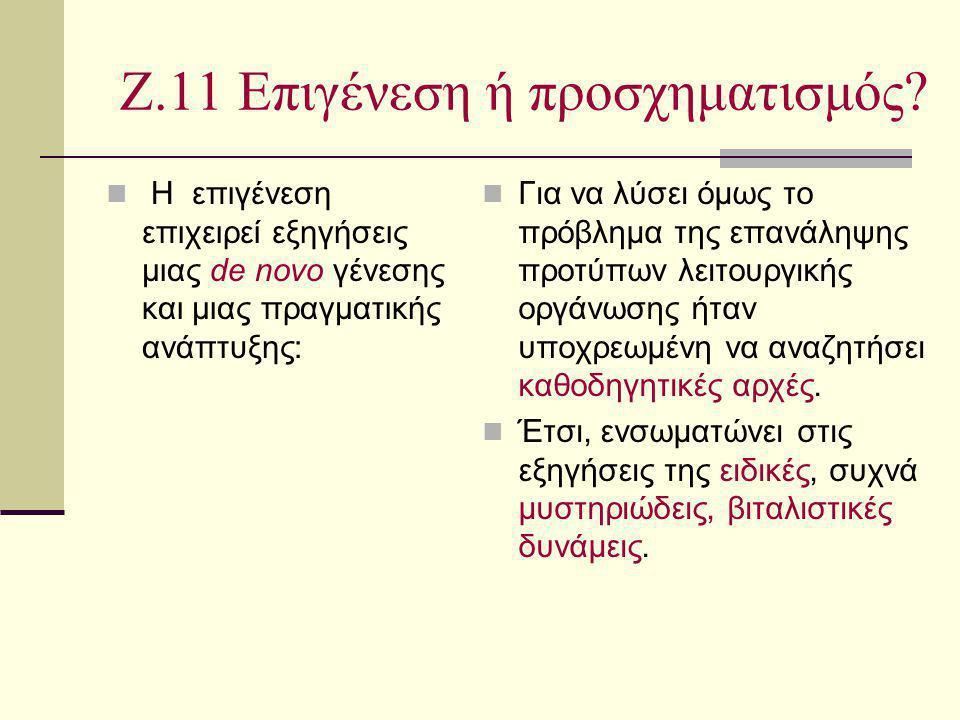 Ζ.11 Επιγένεση ή προσχηματισμός