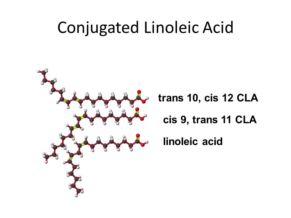 Conjugated Linoleic Acid