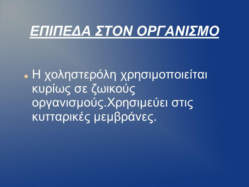 ΕΠΙΠΕΔΑ ΣΤΟΝ ΟΡΓΑΝΙΣΜΟ