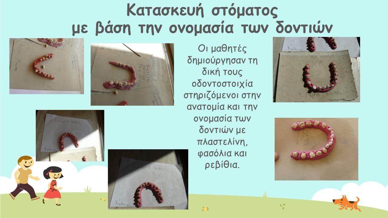 Κατασκευή στόματος με βάση την ονομασία των δοντιών