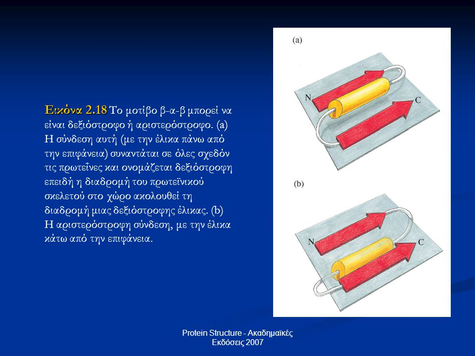 Protein Structure - Ακαδημαϊκές Εκδόσεις 2007