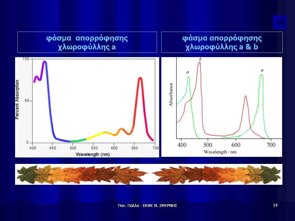 φάσμα απορρόφησης χλωροφύλλης a φάσμα απορρόφησης χλωροφύλλης a & b