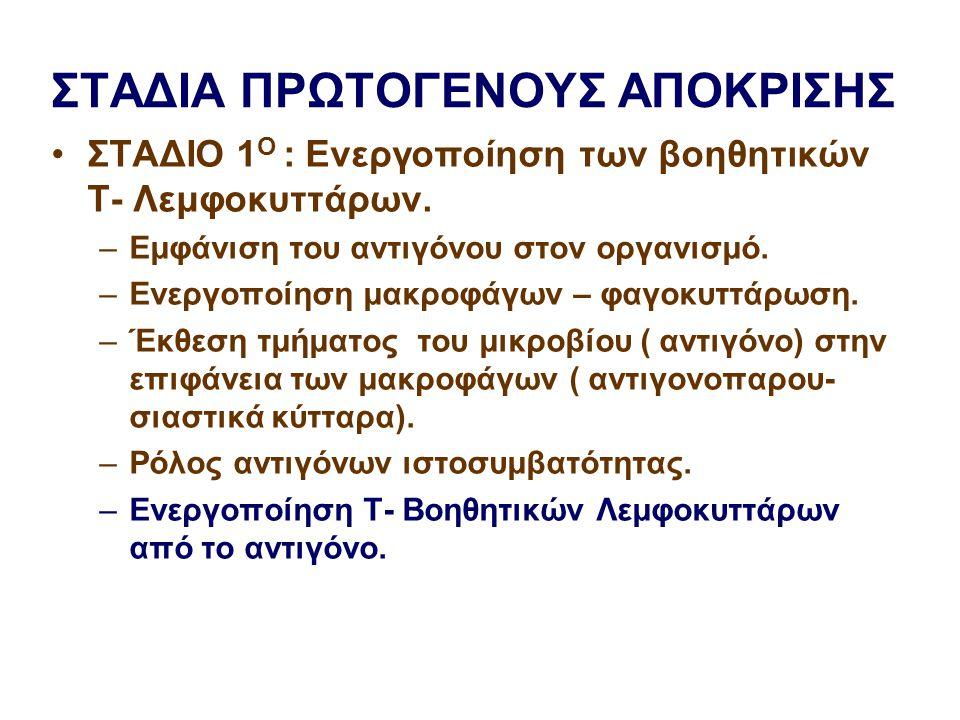 ΣΤΑΔΙΑ ΠΡΩΤΟΓΕΝΟΥΣ ΑΠΟΚΡΙΣΗΣ