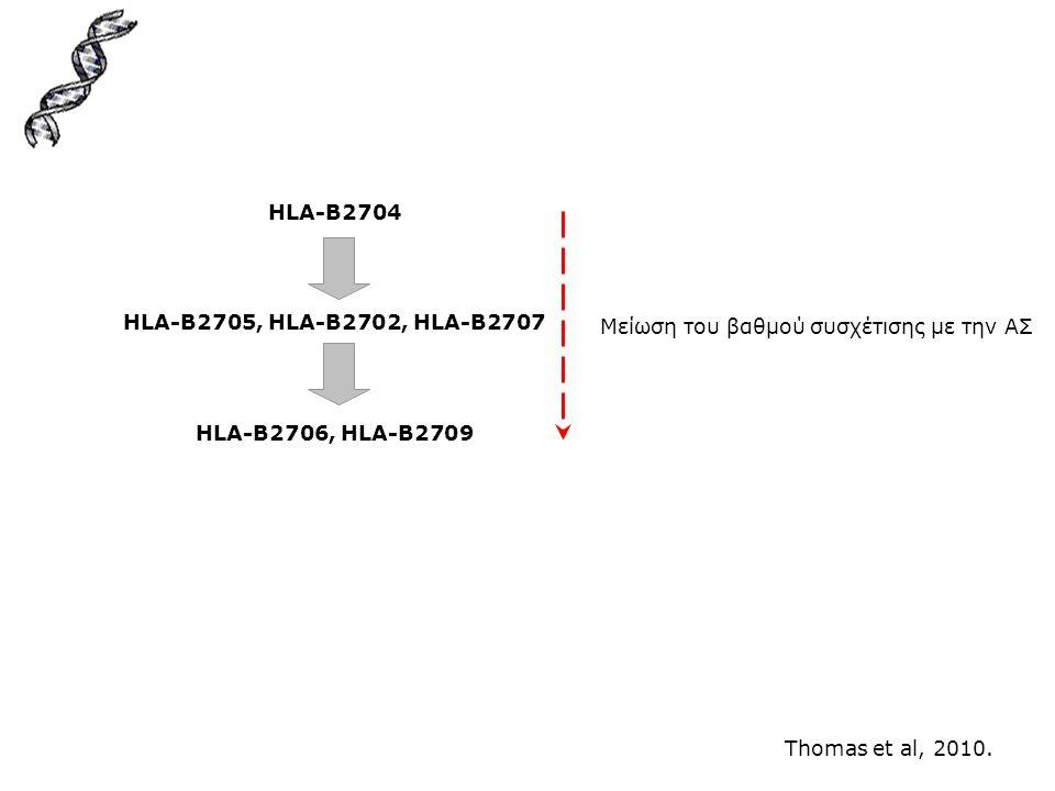 HLA-B2704 HLA-B2705, HLA-B2702, HLA-B2707. HLA-B2706, HLA-B2709. Μείωση του βαθμού συσχέτισης με την ΑΣ.