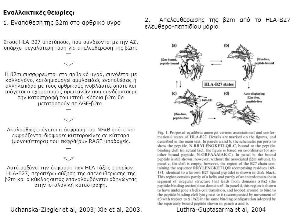 Εναλλακτικές θεωρίες: 1. Εναπόθεση της β2m στο αρθρικό υγρό