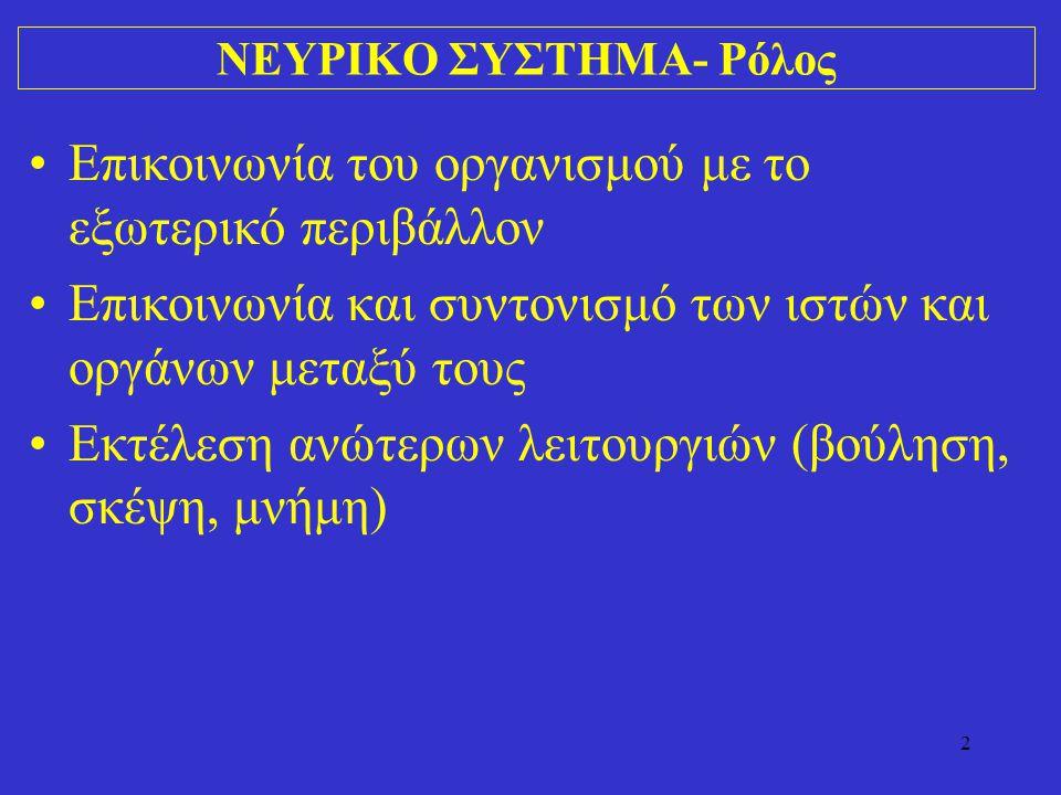 ΝΕΥΡΙΚΟ ΣΥΣΤΗΜΑ- Ρόλος