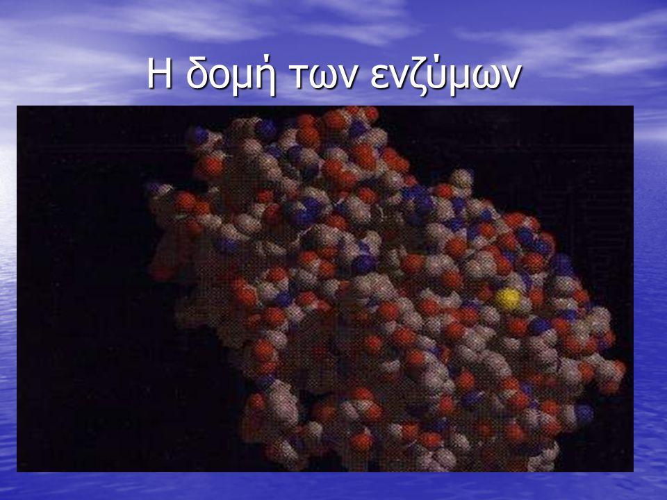 Η δομή των ενζύμων