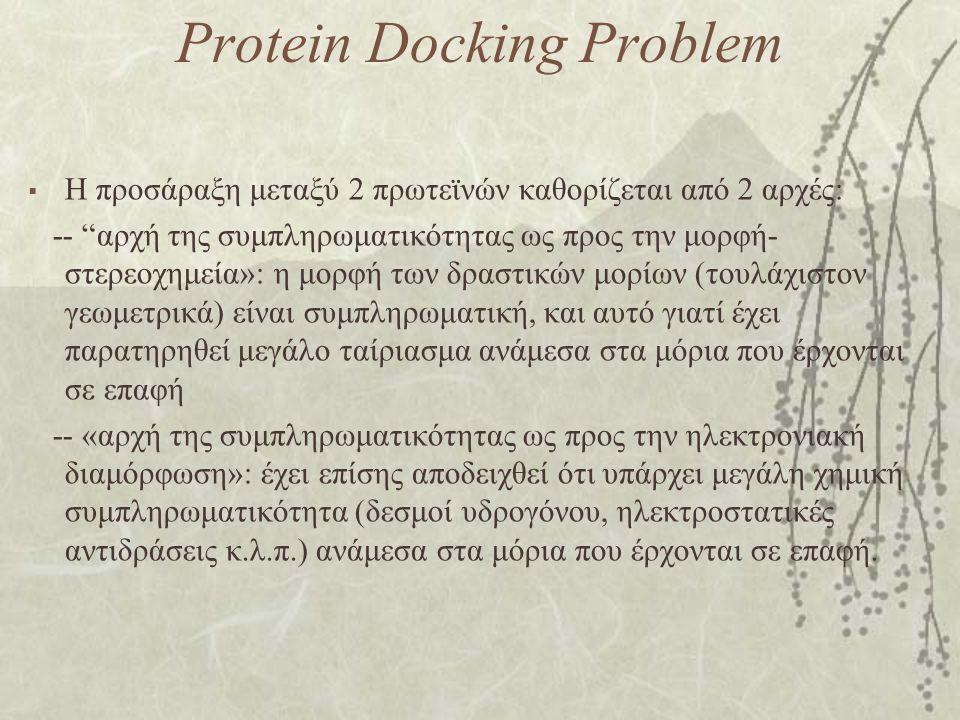 Protein Docking Problem