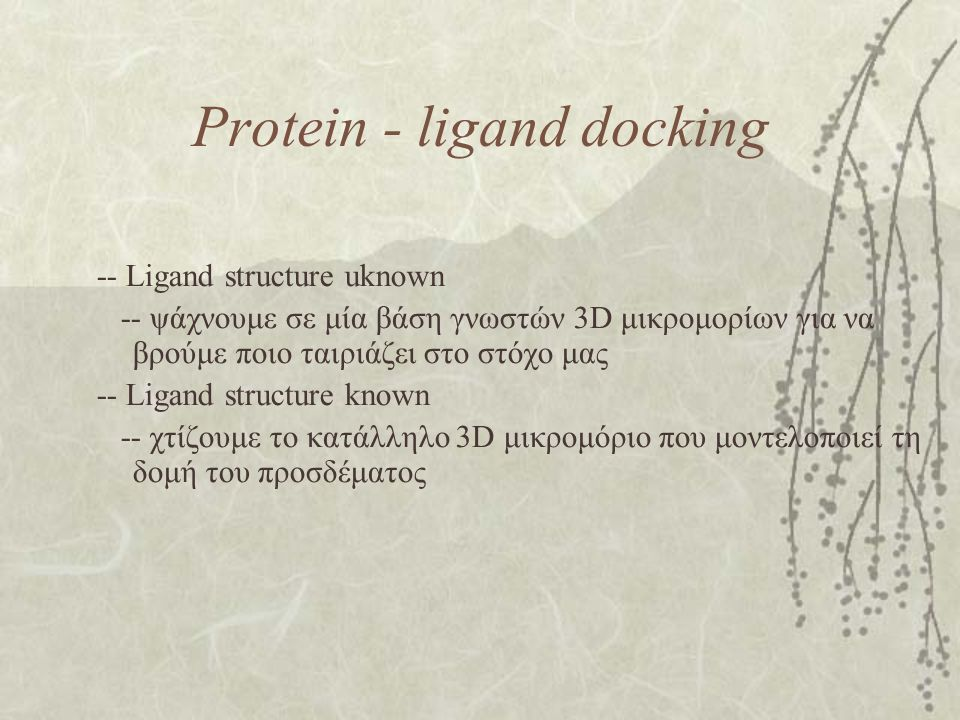 Protein - ligand docking