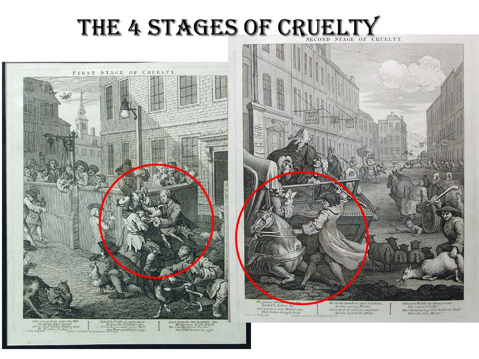 The 4 stages of cruelty
