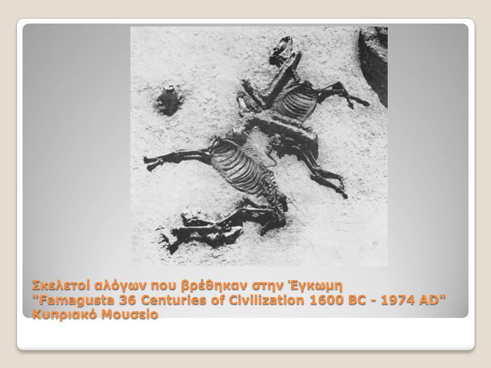 Σκελετοί αλόγων που βρέθηκαν στην Έγκωμη Famagusta 36 Centuries of Civilization 1600 BC - 1974 AD Κυπριακό Μουσείο