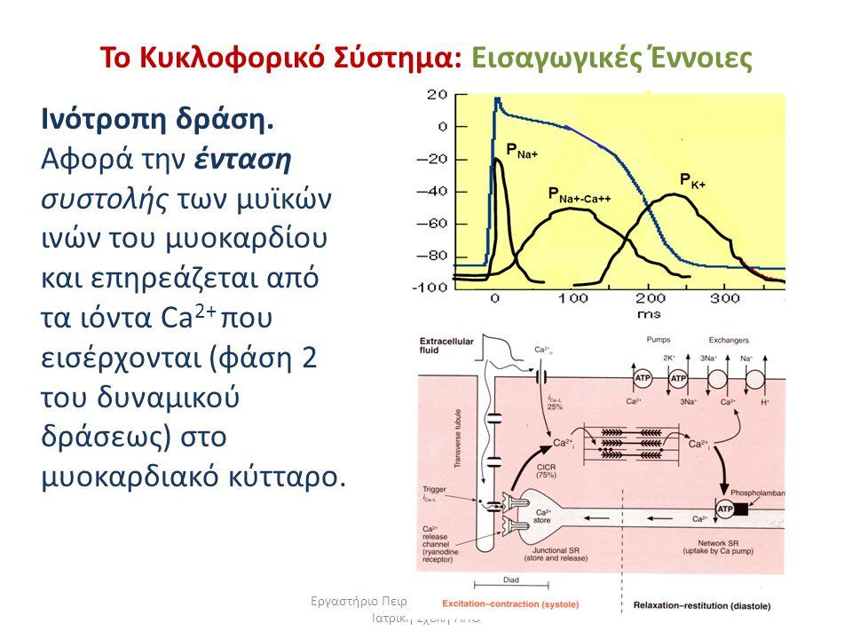 Το Κυκλοφορικό Σύστημα: Εισαγωγικές Έννοιες